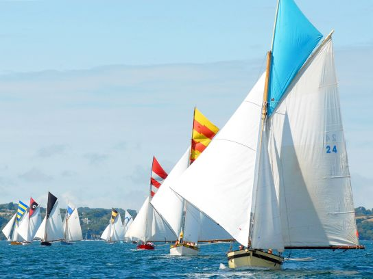 Dozens of sailing ships at Falmouth Sailing Regatta.