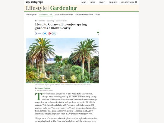 The Nare on The Telegraph website lifestyle section.