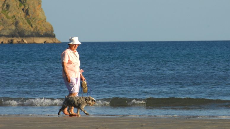 A woman walks her dog along Carne Beach, south Cornwall.