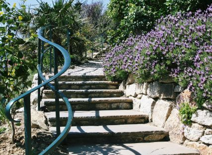 Steps up through The Nare hotel gardens.